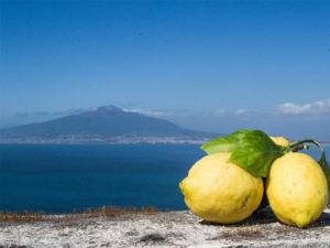 Sorrento olijfolie &citroenen